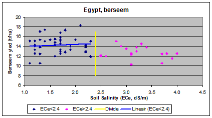 berseem (clover) and salinity in Egypt