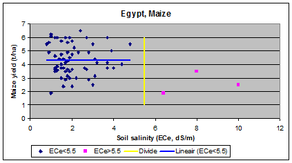 maize (corn) and        salinity in Egypt